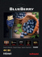 Audioquest BlueBerry HDMI 0,6 m - kabel HDMI-HDMI