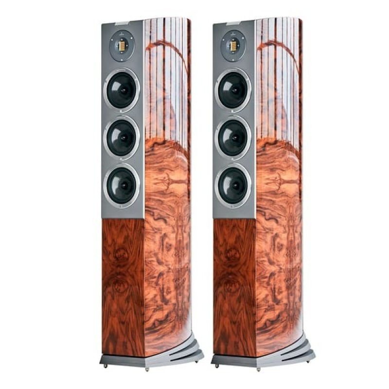 Audiovector R8 Arreté Italian Walnut Burl