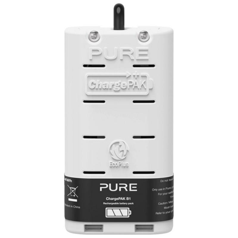 Pure ChargePAK B1