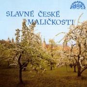 Symfonický orchestr hl.m. Praha - Slavné české maličkosti CD