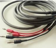 Cardas Audio 101 Speaker 3m