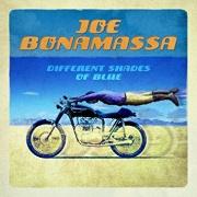 Joe Bonamassa - Different Shades of Blue LP