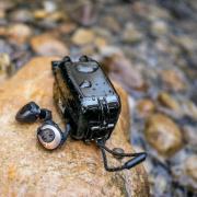 Klipsch T5 II True Wireless Sport Black
