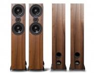 Cambridge Audio SX80 - orech