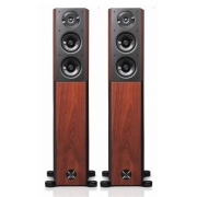 Audio Physic Avantera - Walnut