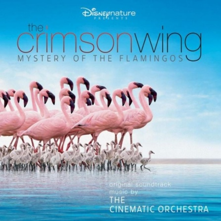 Cinematic Orchestra - Crimson Wing - Mystery Of The Flamingos CD